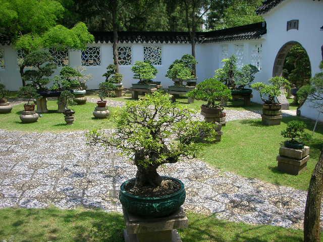Soukworld - Jardin asiatique ...